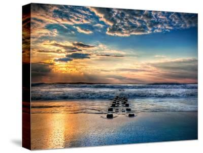 Into the Sea-Natalie Mikaels-Stretched Canvas Print