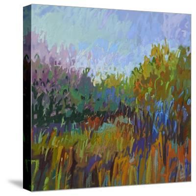 Color Field 62-Jane Schmidt-Stretched Canvas Print