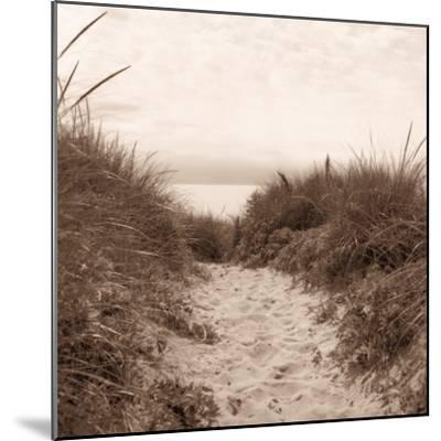 Dune Path-Christine Triebert-Mounted Photographic Print