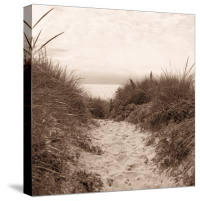Dune Path-Christine Triebert-Stretched Canvas Print