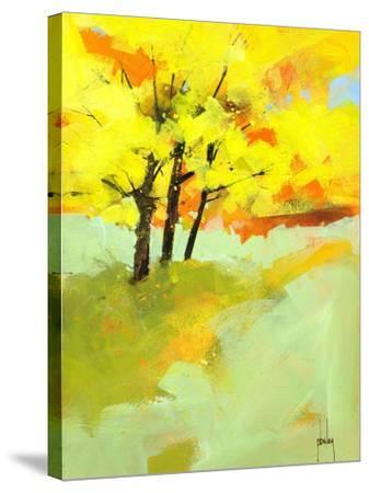 Autumn Trio-Paul Bailey-Stretched Canvas Print