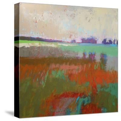 Panorama 2-Jane Schmidt-Stretched Canvas Print