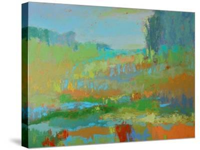 Southern View II-Jane Schmidt-Stretched Canvas Print