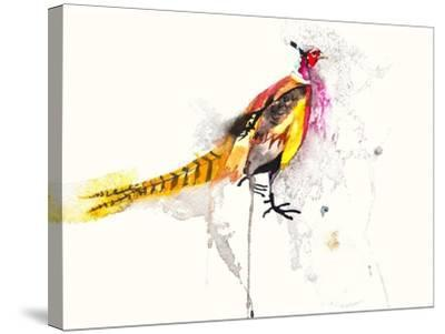 Pheasant-Karin Johannesson-Stretched Canvas Print