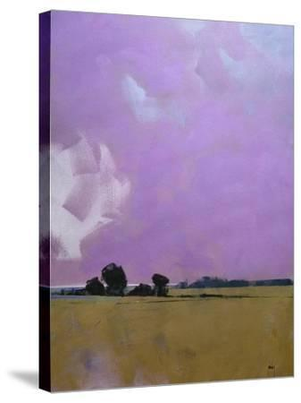 Over the Fields to the Distant Sea-Paul Bailey-Stretched Canvas Print