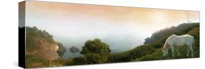 Breath of Early Morning-David M (Maclean)-Stretched Canvas Print