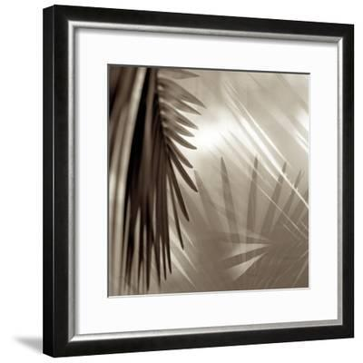 Florison #55-Alan Blaustein-Framed Photographic Print