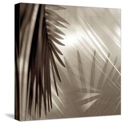 Florison #55-Alan Blaustein-Stretched Canvas Print