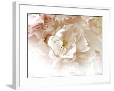 Froth-Judy Stalus-Framed Photographic Print
