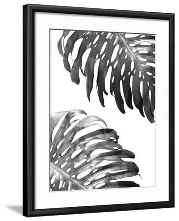 Double Philodendron (BW)-Lexie Greer-Framed Photographic Print