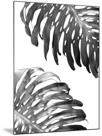 Double Philodendron (BW)-Lexie Greer-Mounted Photographic Print