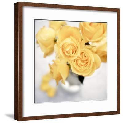 Floral Color #21-Alan Blaustein-Framed Photographic Print