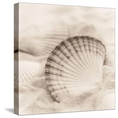 La Mer 3-Alan Blaustein-Stretched Canvas Print
