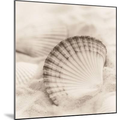 La Mer 3-Alan Blaustein-Mounted Photographic Print