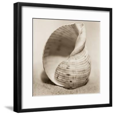 La Playa No4-Alan Blaustein-Framed Photographic Print