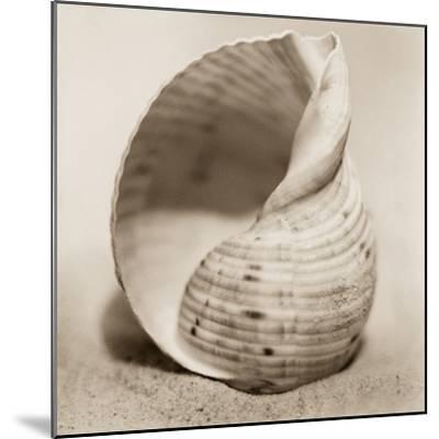 La Playa No4-Alan Blaustein-Mounted Photographic Print