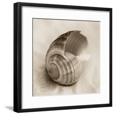 La Playa No3-Alan Blaustein-Framed Photographic Print