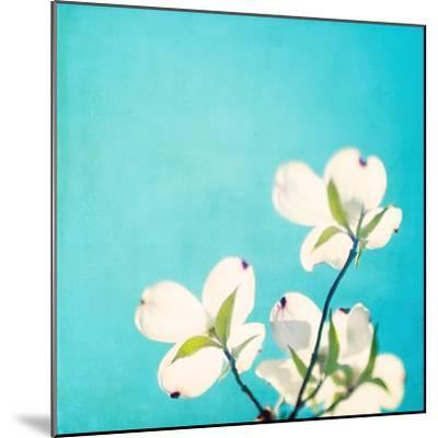 A Life So Colorful-Carolyn Cochrane-Mounted Photographic Print