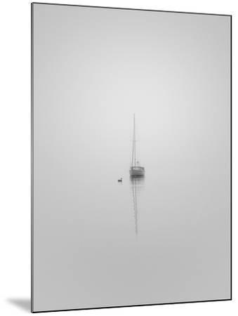 Companions-Nicholas Bell-Mounted Photographic Print