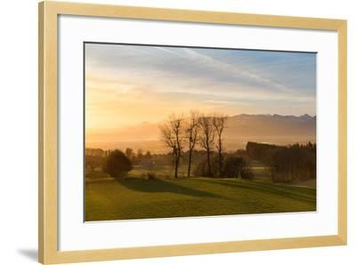 Soothing Light-Anne Schneidersmann-Framed Photographic Print
