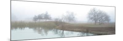 Lakeside Trail-Alan Blaustein-Mounted Photographic Print