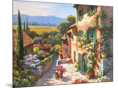 Spring in the Valley-Sung Kim-Mounted Art Print