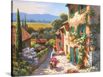 Spring in the Valley-Sung Kim-Stretched Canvas Print
