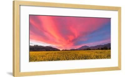 Spring Sunset Napa Valley-Elizabeth Carmel-Framed Photographic Print