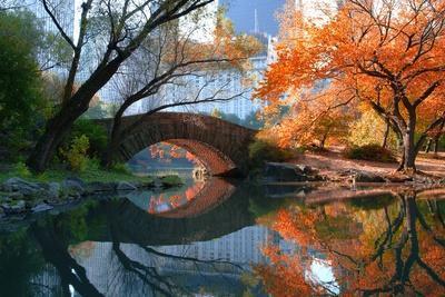 Gapstow Bridge, Fall-Michael Chen-Framed Photographic Print