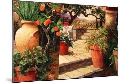 Turo Tuscan Orange-Art Fronckowiak-Mounted Art Print