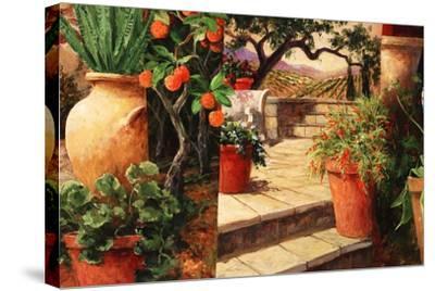 Turo Tuscan Orange-Art Fronckowiak-Stretched Canvas Print