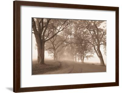 Guardians of the Road-Igor Svibilsky-Framed Photographic Print