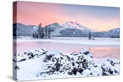 Good Morning Glory-Ross Lipson-Stretched Canvas Print