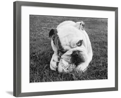 Obsess-Sharon Beals-Framed Photographic Print