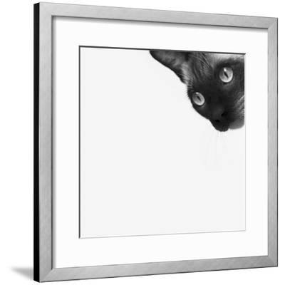 Be Brave-Jon Bertelli-Framed Photographic Print