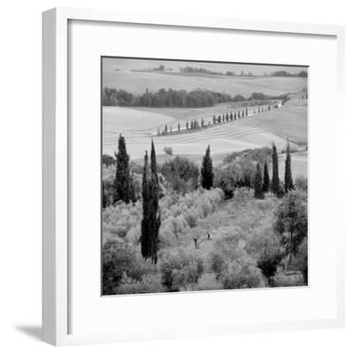 Tuscany #6-Alan Blaustein-Framed Photographic Print