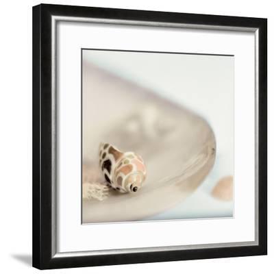 Lagoon Tidepool #2-Alan Blaustein-Framed Photographic Print
