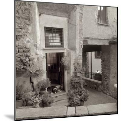 Umbria #28-Alan Blaustein-Mounted Photographic Print