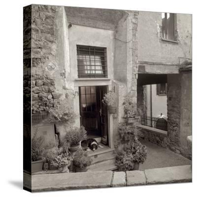 Umbria #28-Alan Blaustein-Stretched Canvas Print