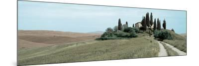 Val d'Orcia Pano #4-Alan Blaustein-Mounted Photographic Print
