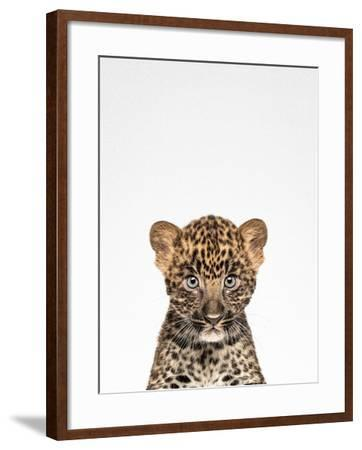 Leopard-Tai Prints-Framed Photographic Print