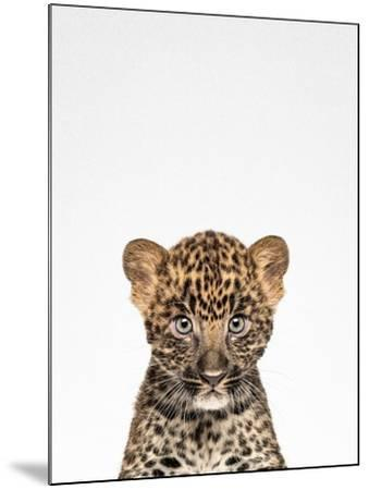 Leopard-Tai Prints-Mounted Photographic Print