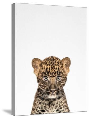 Leopard-Tai Prints-Stretched Canvas Print