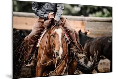 Cutting Horse-Lisa Dearing-Mounted Photographic Print