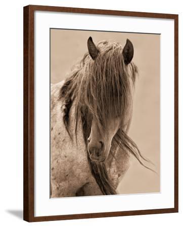 Freedom-Lisa Dearing-Framed Photographic Print