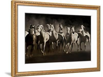 Dream Horses-Lisa Dearing-Framed Photographic Print