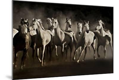 Dream Horses-Lisa Dearing-Mounted Photographic Print