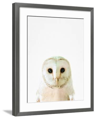 Owl-Tai Prints-Framed Photographic Print