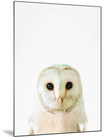 Owl-Tai Prints-Mounted Photographic Print