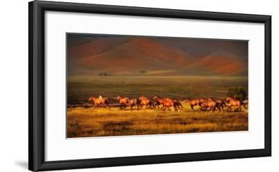 Montana Dreaming-Lisa Dearing-Framed Photographic Print
